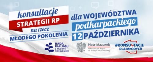 konsultacje podkarpackie logo
